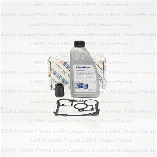 HALDEX FILTER KIT WITH OIL REAR DIFF CLUTCH SAAB/OPEL G4